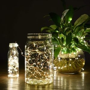 LED Decor Fairy String Lights
